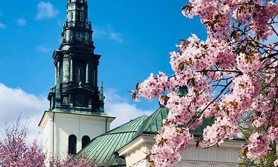Untitled - Svenska Kyrkan
