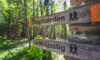 A picture of some hiking signs in Säby Västerskog